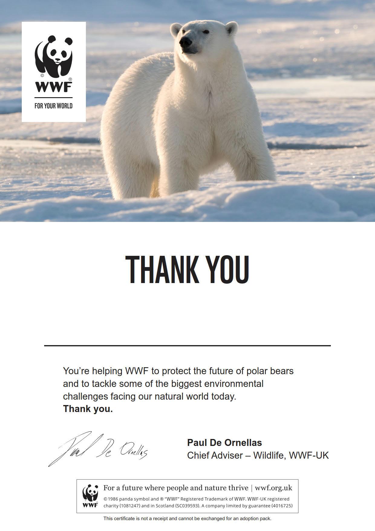 Adopt a polar bear   WWF