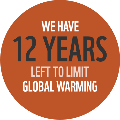 We have 12 years left to stop climate change