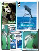 Dolphin Fact Pack
