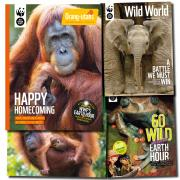 Orang-utan Regular Updates