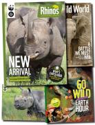 Rhino Regular Updates