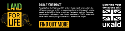 Double your impact with UK Aid Match - Find Out More