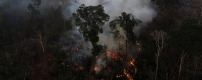 Aerial View of Amazon Fires