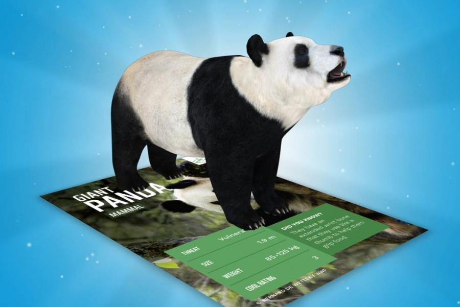 Amazing Planet AR Card with Panda