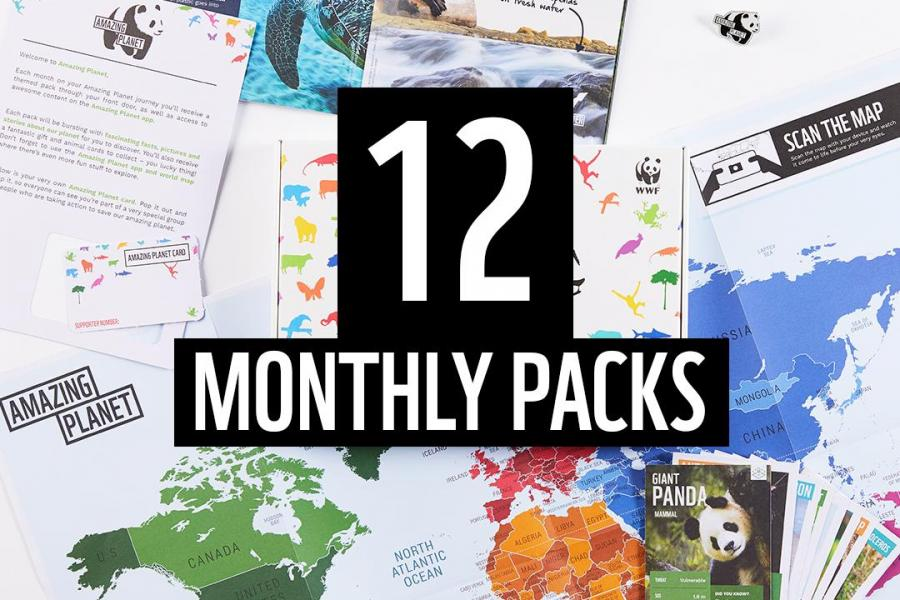Amazing Planet 12 Monthly Packs